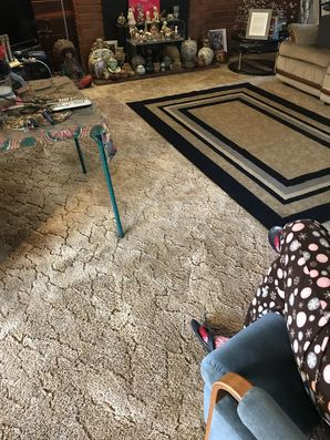 Carpet Cleaning in Richmond, CA (2)