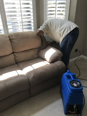 Carpet Cleaning in Berkeley, CA